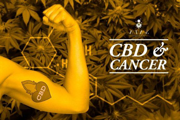 ¿Puede el CBD ser una alternativa de tratamiento natural eficaz contra el cáncer?