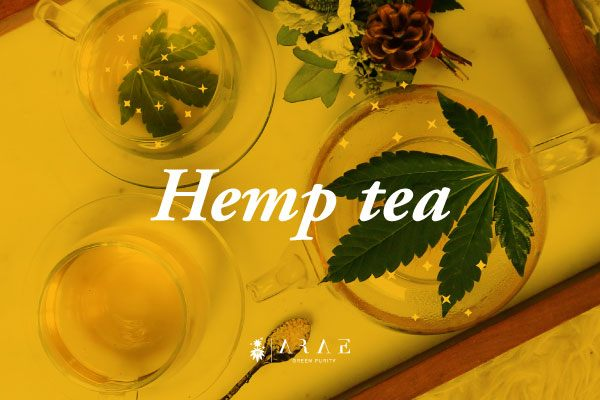 Image of a table with a hemp tea service served