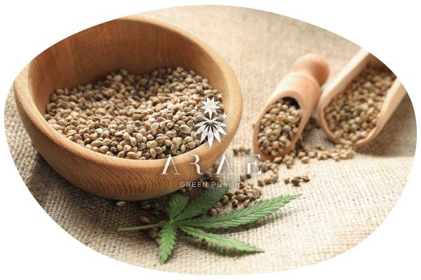 imagen donde se ve un recipiente con semillas de cáñamo para triturar y elaborar Tofu de cáñamo*