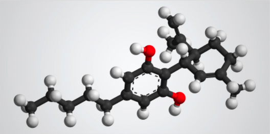 CBD molecule represented by a model of balls and rods.
