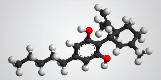 Ein CBD-Molekül, dargestellt durch ein Modell aus Kugeln und Stäbchen.